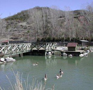 Pont de Suert - Centre de Fauna (Foto: Turisme Alta Ribagorça)