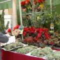 Fira de Nadal a la Sagrada Família de Barcelona