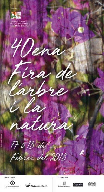 Mataró - Fira de l'Arbre i la Natura