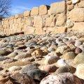 Parc Arqueològic del Vilot