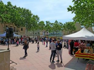 Santa Margarida i els Monjos - Sant Jordi (Foto: Ajuntament de Santa Margarida i els Monjos)