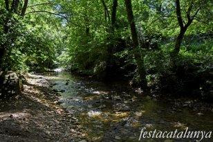 Vallfogona del Ripollès - Pont medieval - Riera de Vallfogona