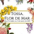 Tossa, Flor de Mar