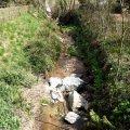 Font del Pic de Sant Hilari Sacalm i llera del riu Vallicrosa