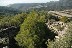Òdena - Torre del Collet de Sant Pere Màrtir