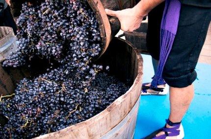 Font-rubí - Vinòleum i Festa del Most (Foto: www.font-rubi.org)