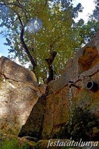 La Llacuna - Àlbers de la Font Cuitora