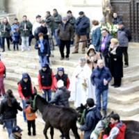 Ascó - Festes de Sant Antoni (Foto: www.santantoniasco.org)
