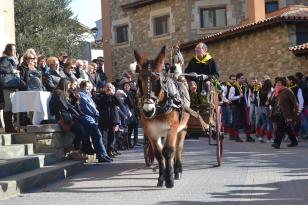 Taradell - Festa dels Tonis (Foto: www.tonistaradell.com)