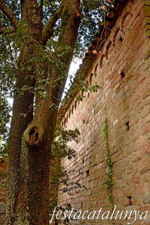 Arbúcies - Sant Cristòfol de Cerdans