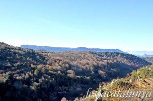 Vilanova de Prades - Vistes panoràmiques des del castell - El Montsant