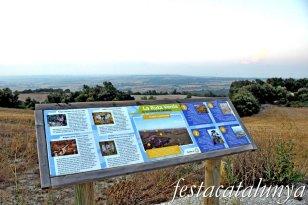 Savallà del Comtat - Parc eòlic de Savallà