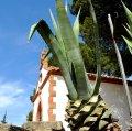 Ermita de la Mare de Déu de Fàtima