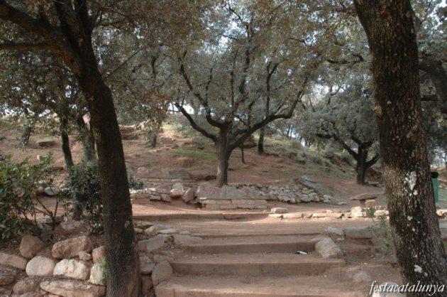 Sant Joan de Vilatorrada - Camí de la sal