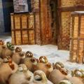 Terracotta, el Museu de la Ceràmica a la Bisbal d'Empordà