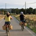 Turisme actiu: rutes i itineraris a peu i amb btt, circuits amb bicicleta...