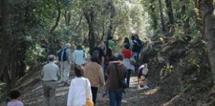 Escapada a la natura al més autèntic Empordà (Foto: visitempordanet.com)