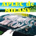 Aplec de Milany a Vallfogona de Ripollès