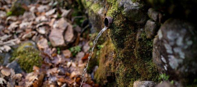 Sant Hilari Sacalm - Ruta a una font (Foto: www.lesguillerieskm0.cat)