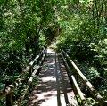 Paratge de la Malesa, a tocar el riu d'Agost o de Gost a la Torre de Claramunt ***