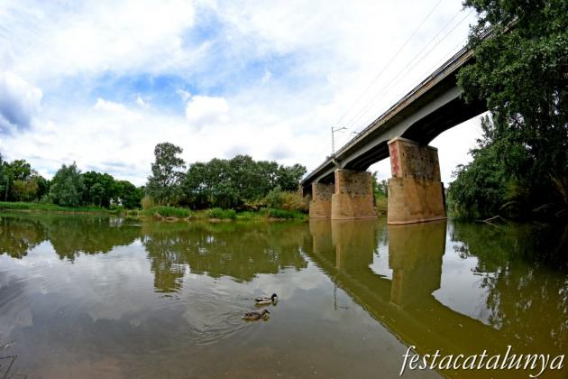 Aiguabarreig de dos rius al terme de Castellgalí: Cardener i Llobregat