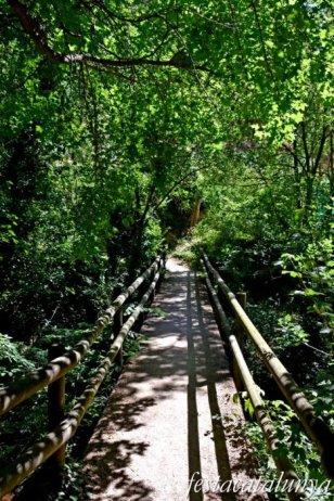 La Torre de Claramunt - Paratge de la Malesa - Riu d'Agost