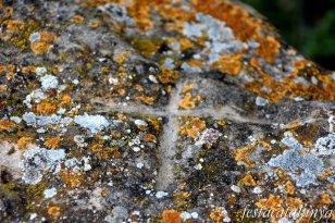 Argençola - Sepulcre megalític o dolmen de Plans de Ferran
