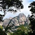 Camí des del funicular de Sant Joan a les capelles de Sant Joan i Sant Onofre a Montserrat ***