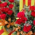 Diada de Sant Jordi a Rofes (La Llacuna)
