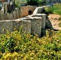 Camí de l'aigua de la mina de l'arquebisbe a Puigpelat