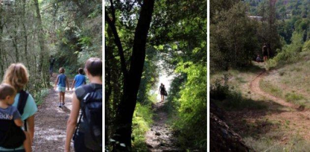 Ruta pels Volcans d'Olot: del Montsacopa al de Montolivet