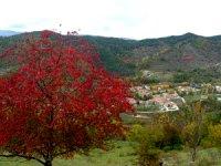 Vallfogona de Ripollès - Rutes de Senderisme