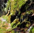 La Vall del Glorieta i Ermita del Remei d'Alcover ***