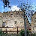 Castell de Cabrera o casal senyorial dels Móra a Cabrera d'Anoia