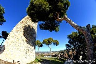 vBanyeres del Penedès - Castell