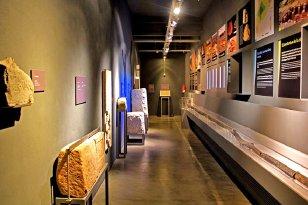 Guissona - Museu, parc arqueològic de la ciutat romana de Iesso (Foto: Museu de Guissona)