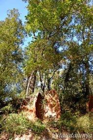 Sant Celoni - Sant Esteve d'Olzinelles - Forns de Pega de can Valls