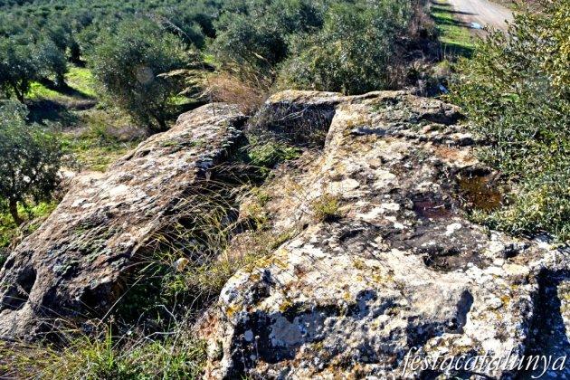 Alguaire - Necròpolis de les roques del Ço del Roig