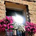 Nucli històric de Montoliu de Lleida