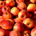 Fira de la Poma d'Ullà