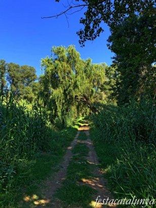 Montoliu de Lleida - Los Patamolls