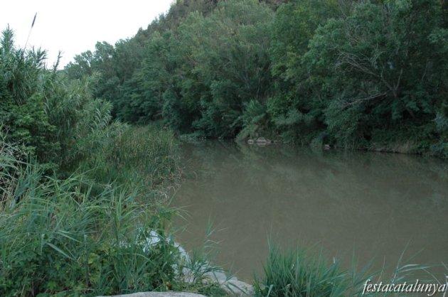 Pont de Vilomara i Rocafort, El - Riu verd