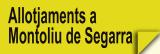 Allotjaments a Montoliu de Segarra