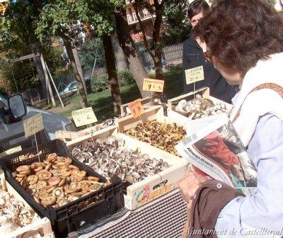 Castellterçol - Festa del Bolet i les Herbes Remeieres (Foto: Ajuntament de Castellterçol)